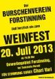 BV Forstinning Weinfest Forstinning